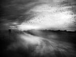 Angela Bacon-Kidwell: Till the Moment It's Gone, 2013