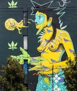 Carl Moore:  Steep (Estiven Mera) El Puyo, Ecuador