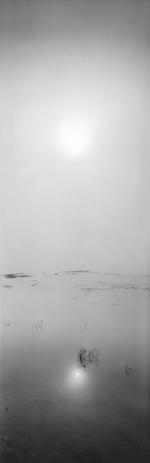 David H. Gibson: Sunrise, August 29, 2005, 8:20 AM, Eagle Nest Lake, New Mexico