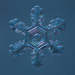 Douglas Levere: Snowflake 2015.02.04.001