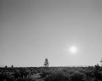 Mark Klett: Black Sun, Mono Lake, CA 6/25/03