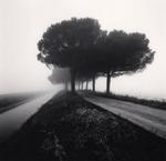 Michael Kenna: Canal and Trees, Goro Ferrara, Veneto, Italy, 2007