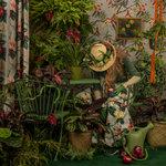 Patty Carroll: Eden