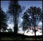 Susannah Hays: Mirror Landscape 2