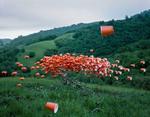 Thomas Jackson: Cups no. 3, 2014