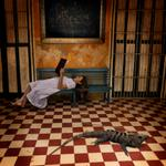Tom Chambers: Afternoon With Octavio /Una tarde con Octavio