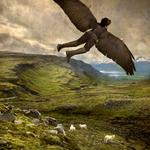 Tom Chambers: Winged Shepherd